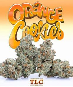 Buy jungle boys Orange Cookies